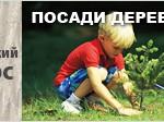 posady-knopka-ukr