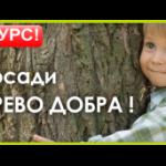 Банер великий Дерево-300x171w